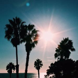 West Coast Chill Vibes : Spotify Playlist [Submit Music